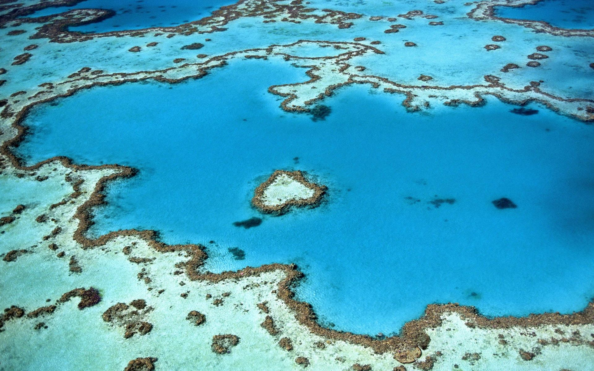 australien_great-barrier-reef