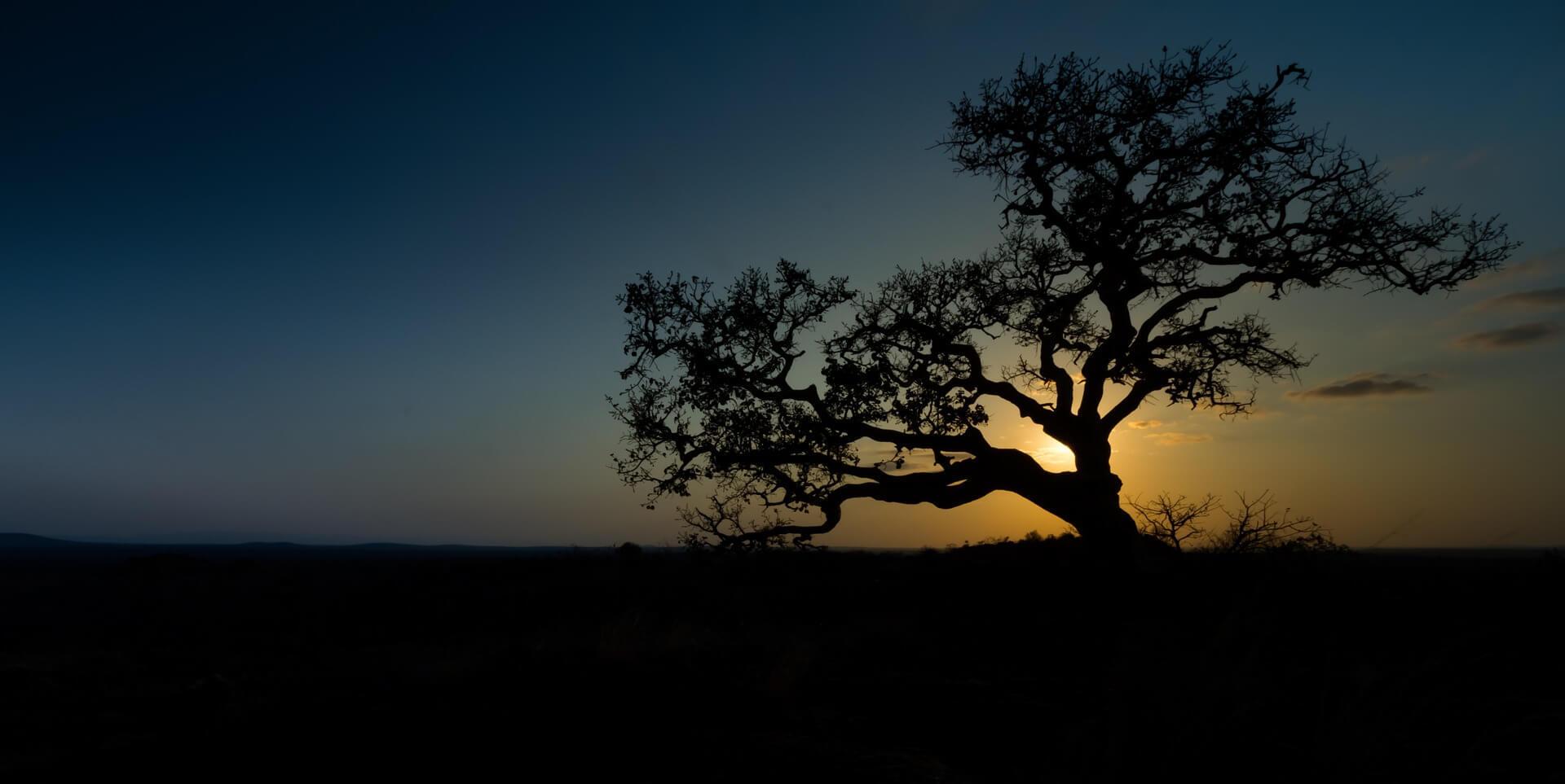 südafrika_beste_reisezeit