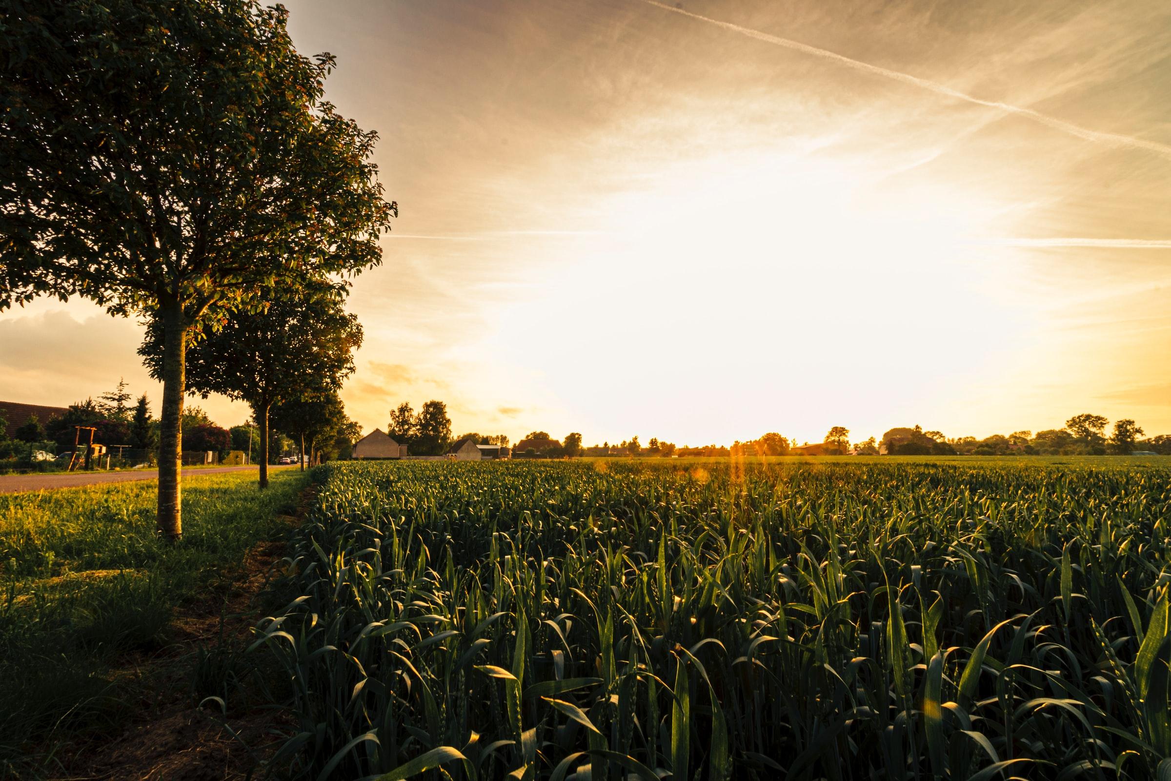 Nachhaltig reisen Landschaft Sonnenaufgang