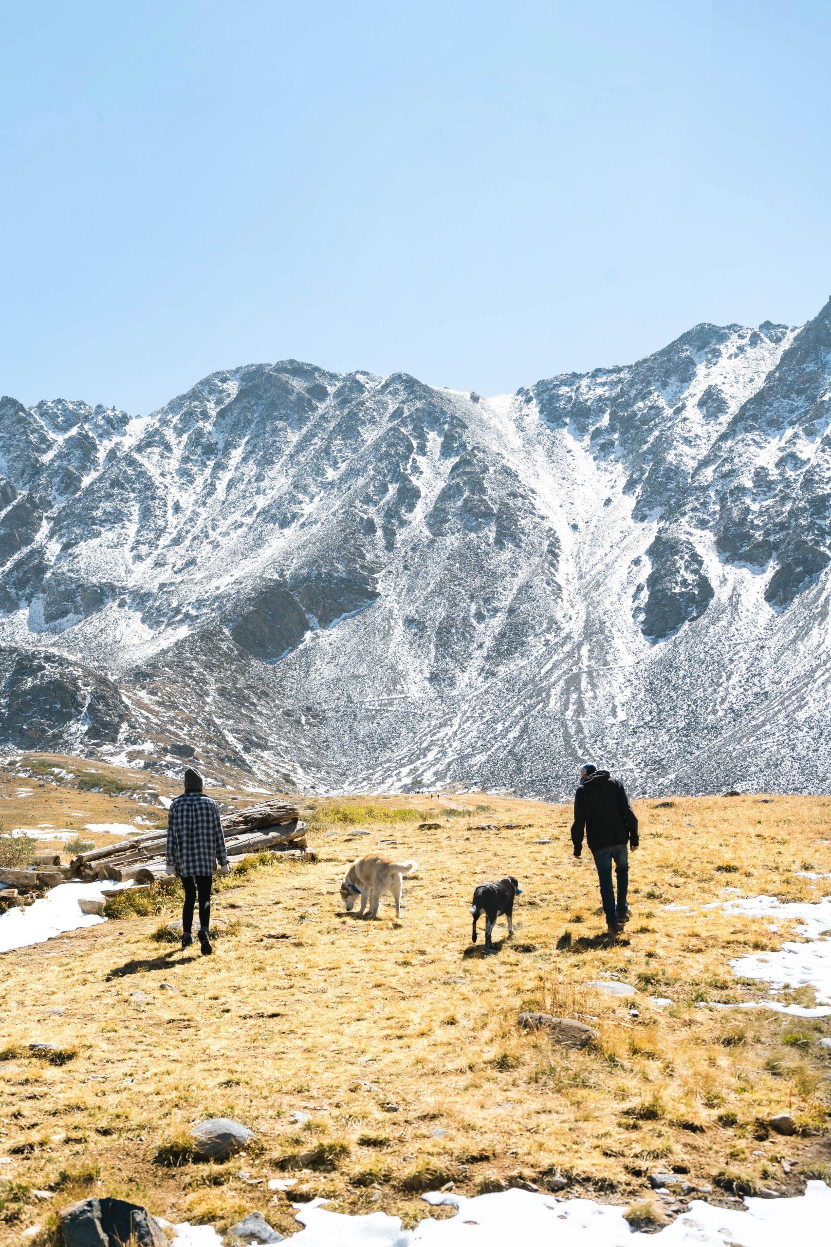 Reisen mit Hund - Landschaft und Menschen und Hunde