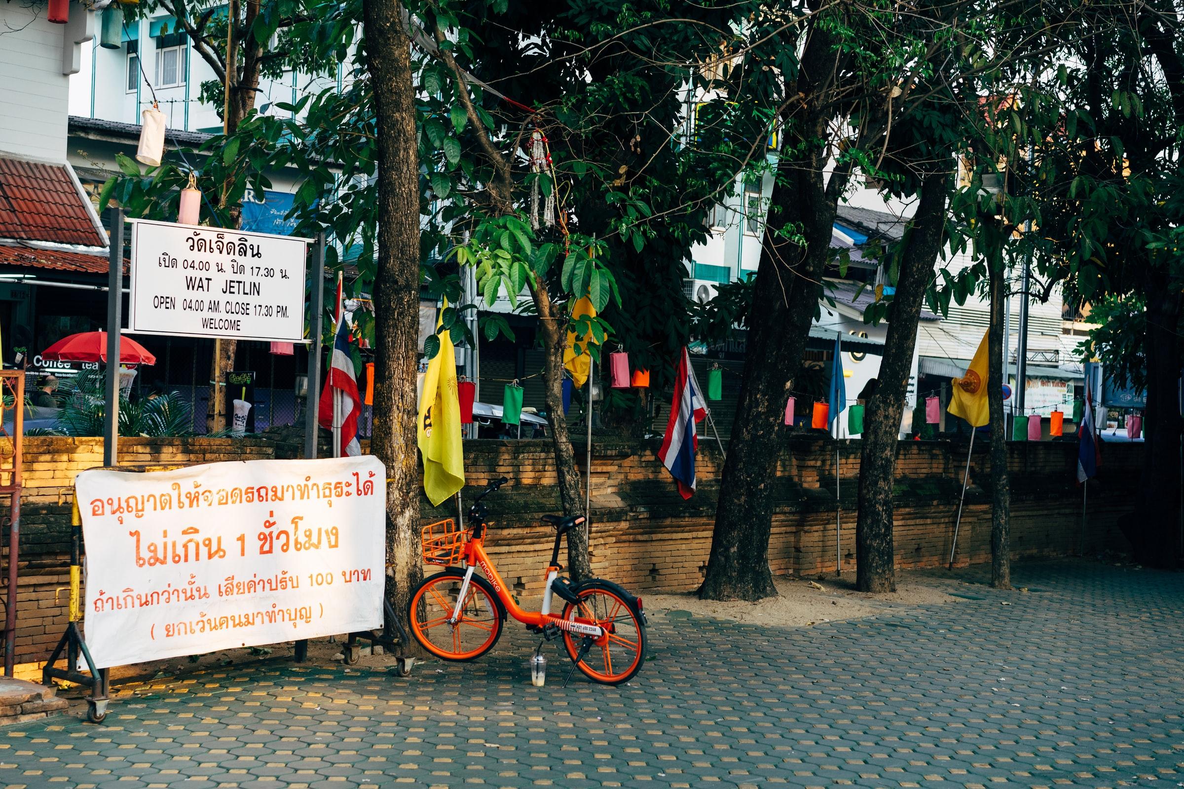 Thailand Rundreise Bäume Fahnen