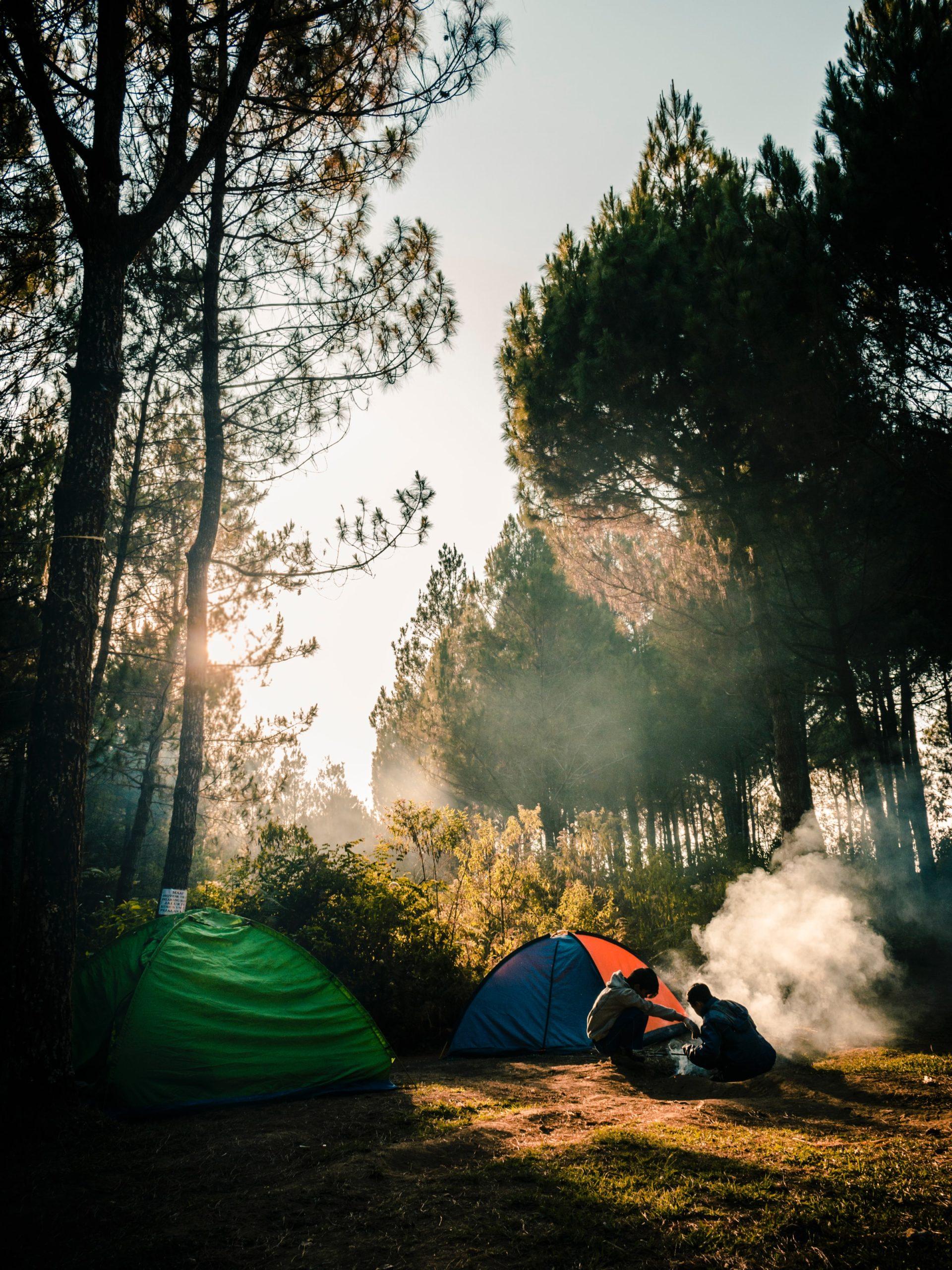 frankreich-campingplätze-wald-zelte