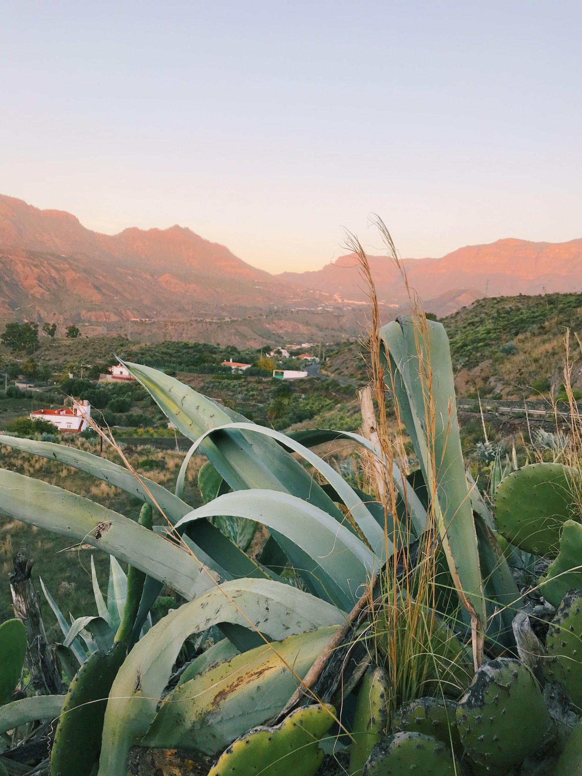 Gran Canaria Ausblick bei Sonnenaufgang
