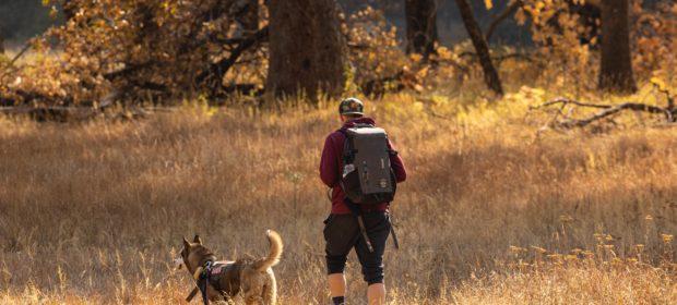 Wandern mit Hund - Mensch und Hund
