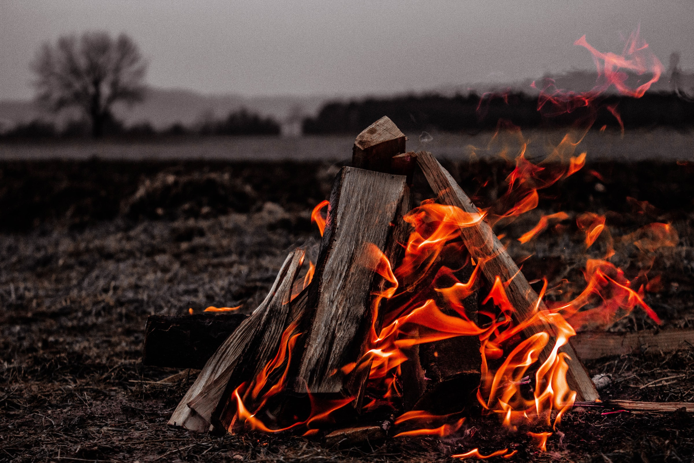 Wildcamping - Lagerfeuer