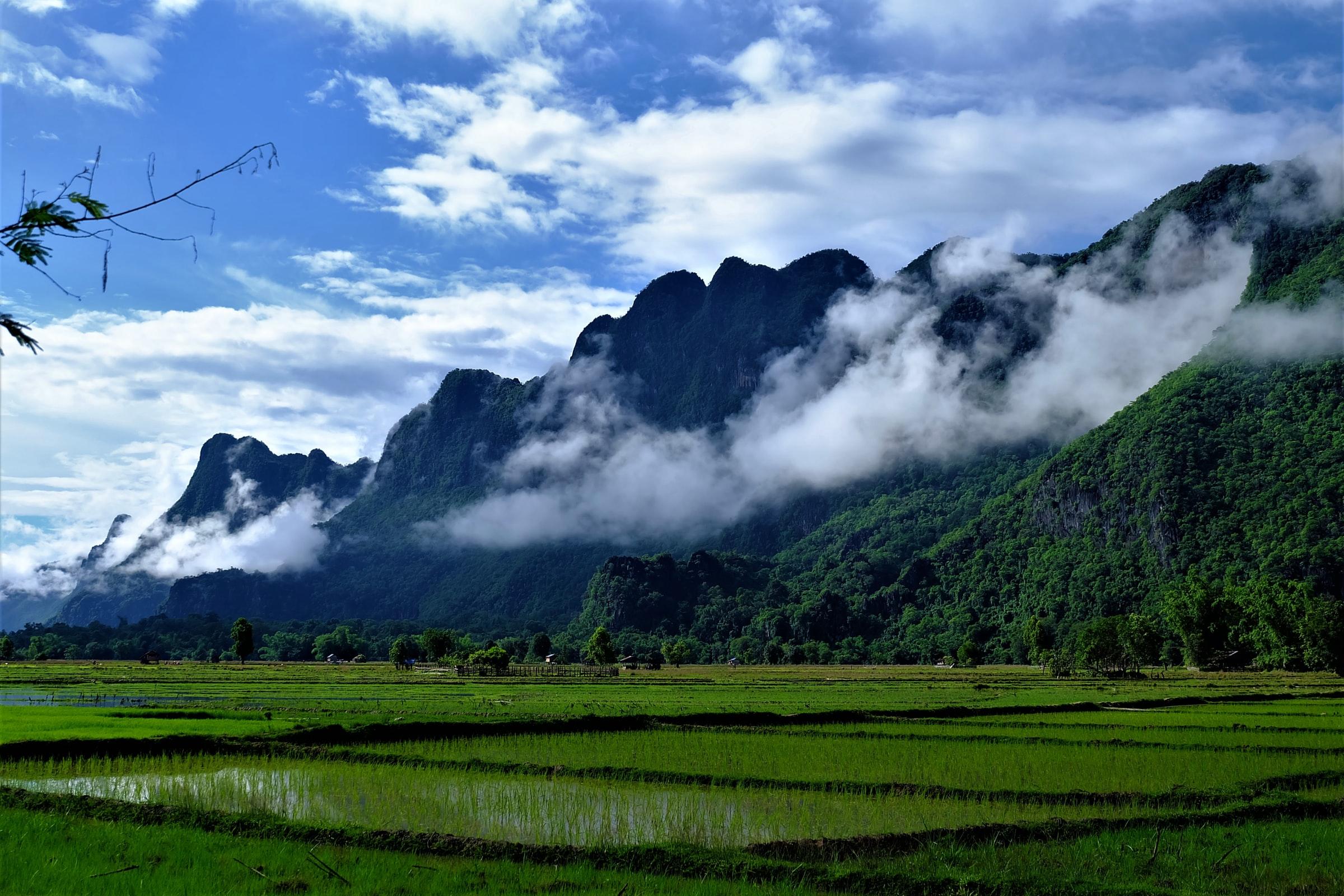 Reisfelder Laos