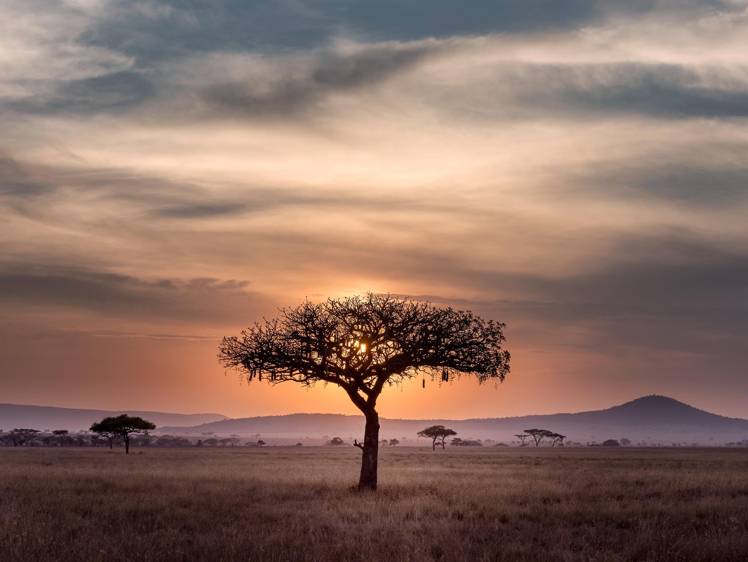 Sonnenuntergang Safari Tansania