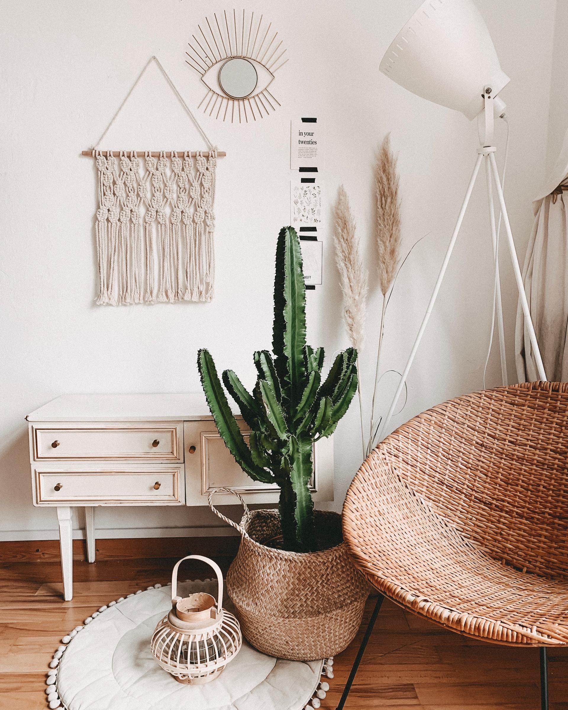 Zimmerdeko mit großen Kaktus und Beachhouseoptik